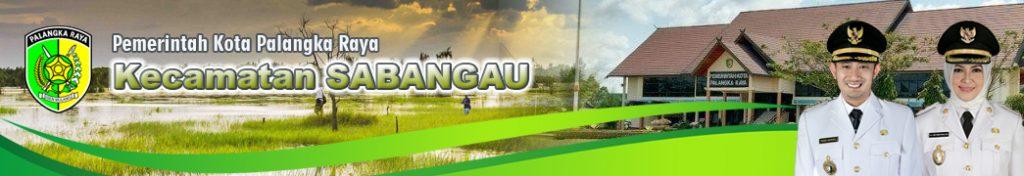 Kecamatan Sabangau Palangka Raya